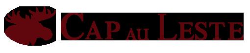 Fjord Saguenay_logo