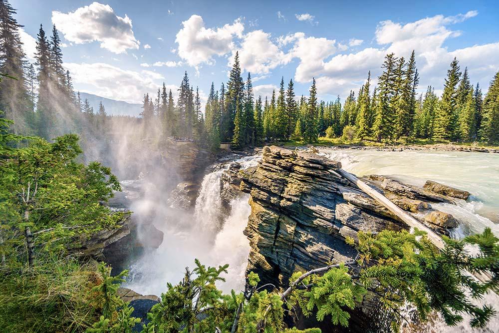 Chutes Athabasca - Randonnée plein air été